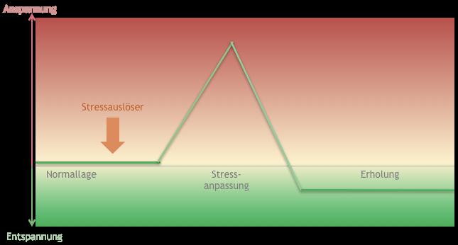Stressphase