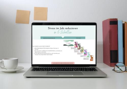 Anleitung Stress im Job
