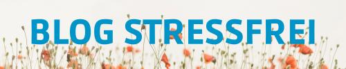 Gastbeitrag im Blog Stressfrei